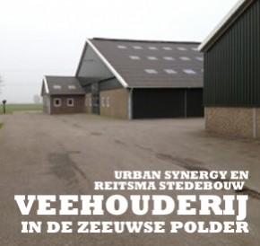 Veehouderij strijkt neer in de Zeeuwse polder